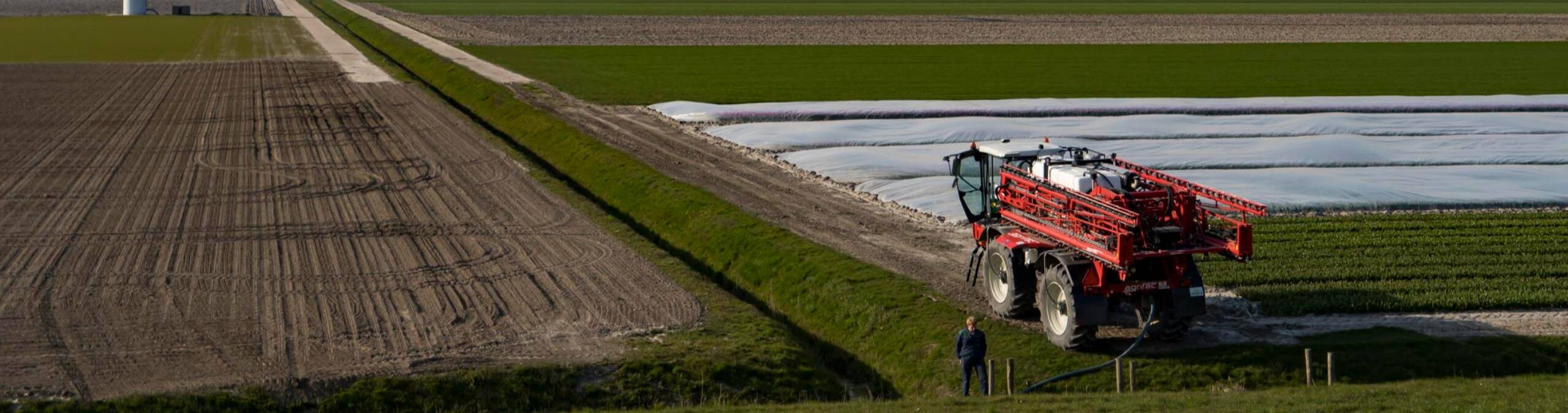 tulp_en_windmolens_-_...