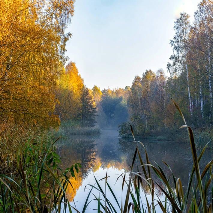 img-stockholm-ecologi...