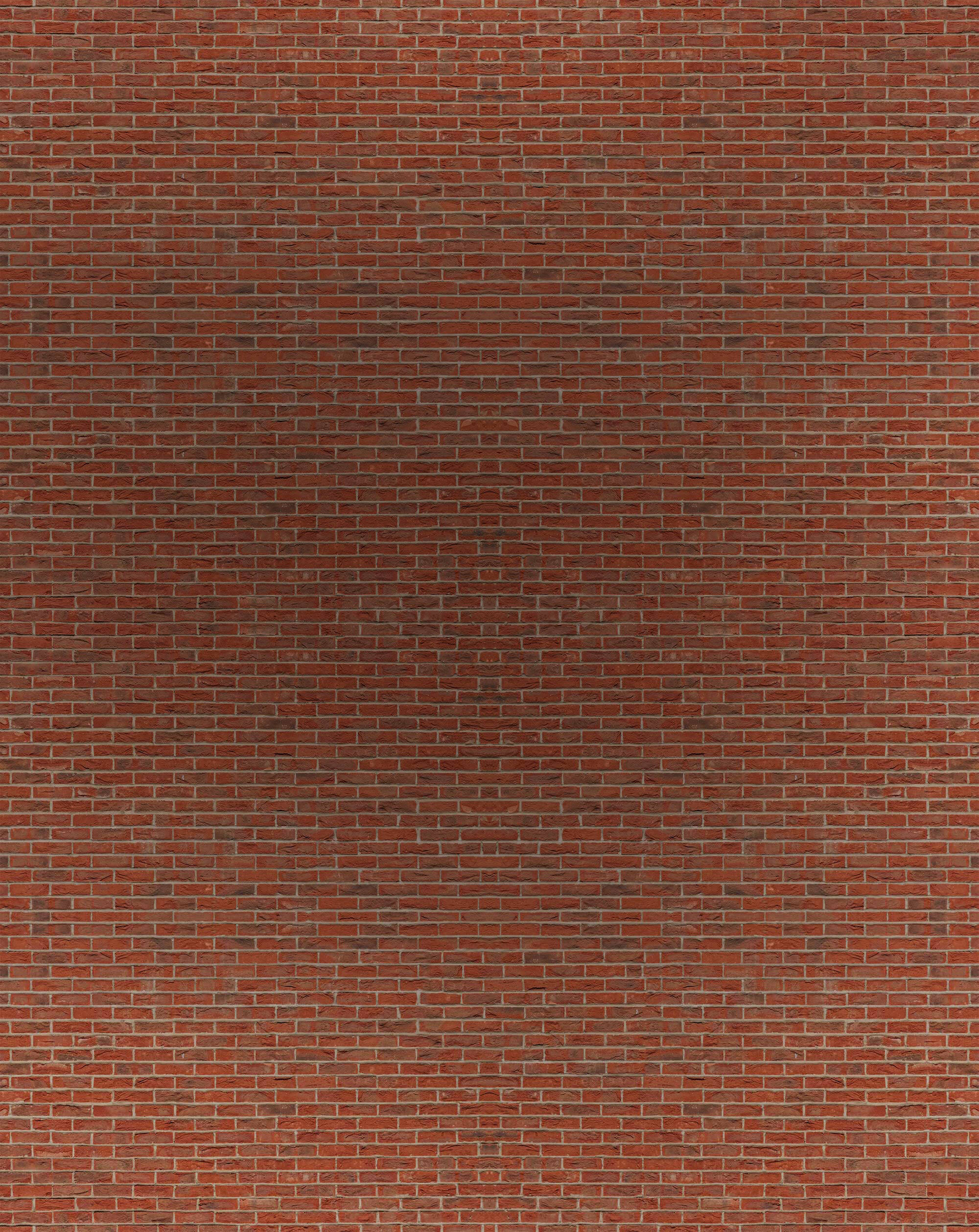 Wall (Copy)