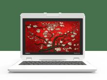 Chromebook360 Pop-up (copy)