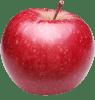 Red Apple (Copy)