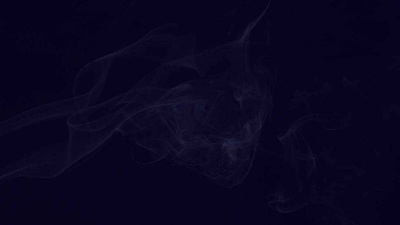rook.jpg