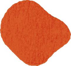oranje1.png
