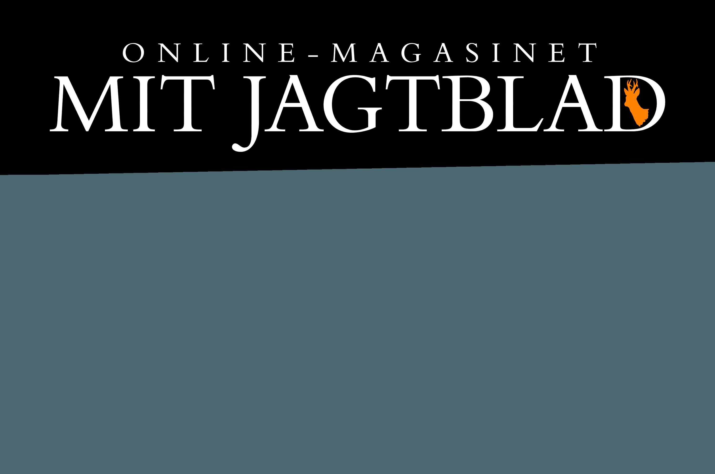 logo med baggrund