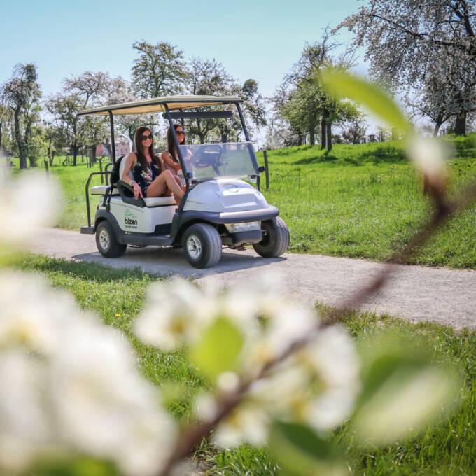 golfwagentjes