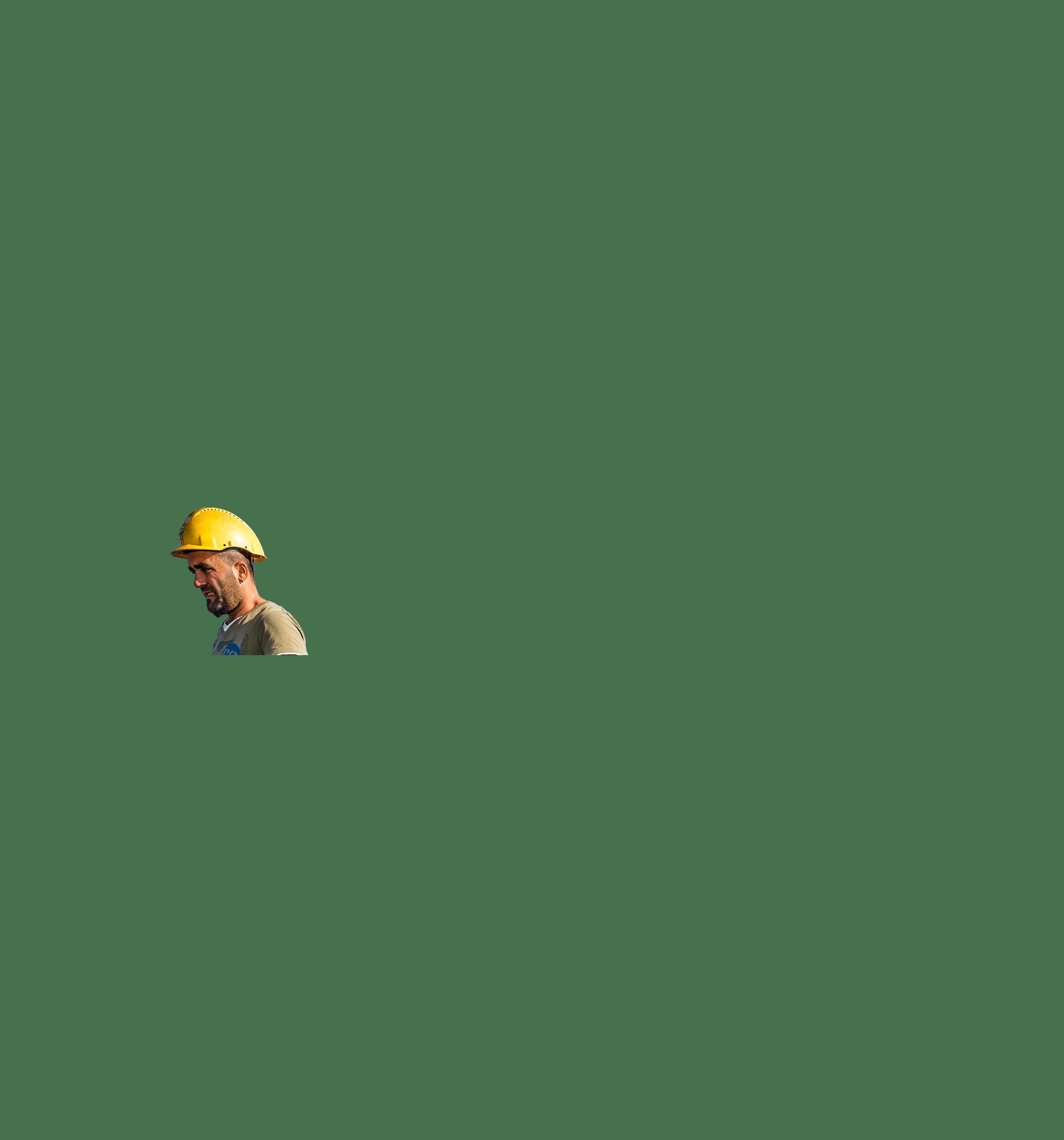 staalvlechter hoofd