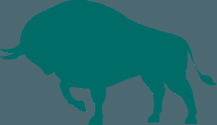 bull.png