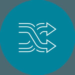 icon (copy1)