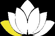 lotus_6_magazine.png (copy2)