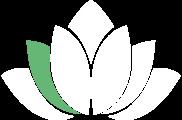 lotus_6_magazine.png (copy1)
