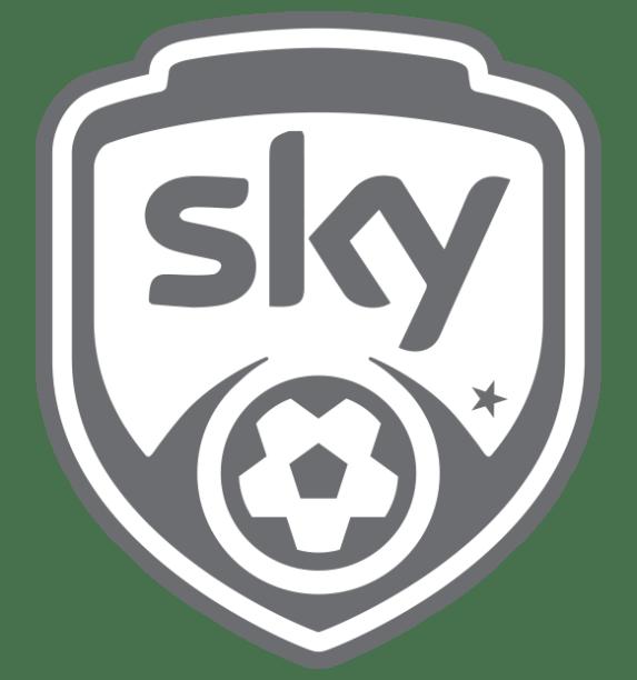 skykick-football.png (copy)