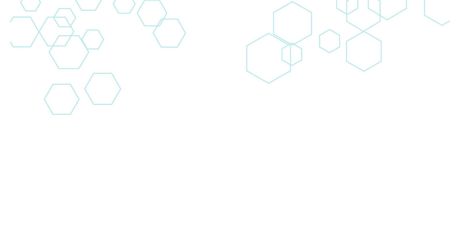 header-v2.jpg (Copy)