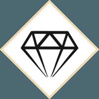 lifetime_warrenty_icon.png (copy)
