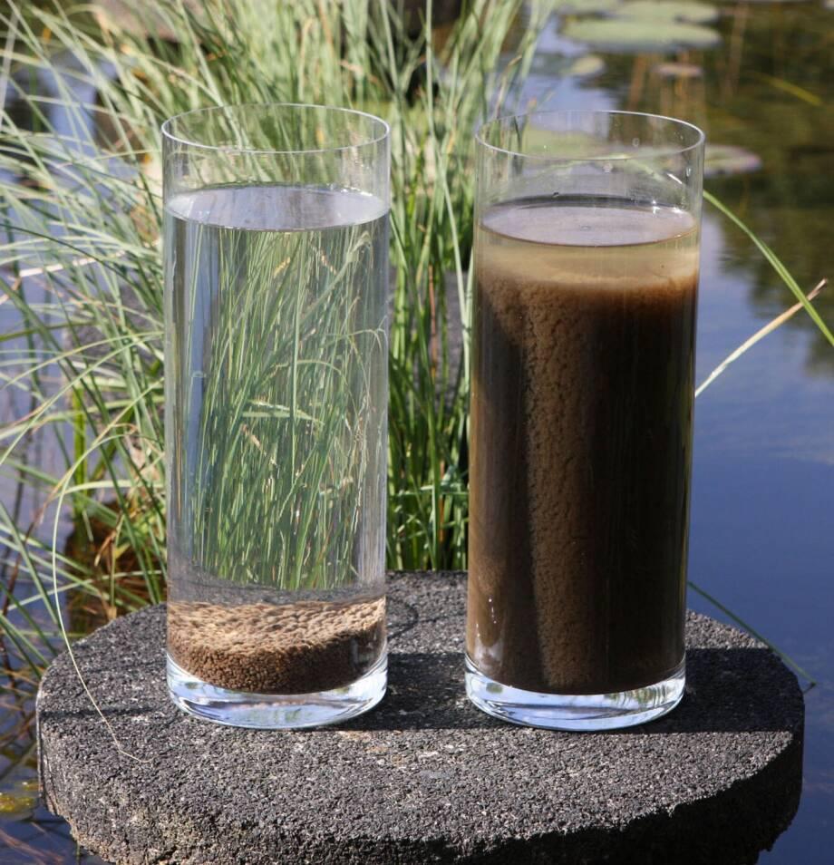 Foto van twee glazen. De linker is gevuld met water en slibkorrels en de rechter met water en slibvlokken. De slibkorrels nemen veel minder ruimte in dan de slibvlokken.