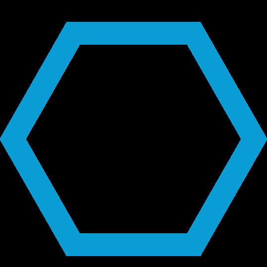 iconmonstr-hexagon-2.png