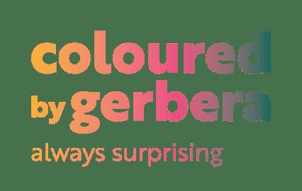 coloured-by-gerbera-l...