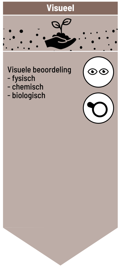 infographic_blok-1.png (copy3)
