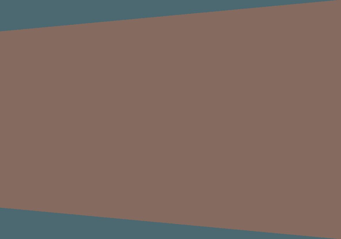 tekstvlak_grijs-bruin.png