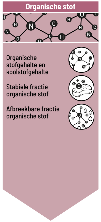 infographic_blok-1_.png