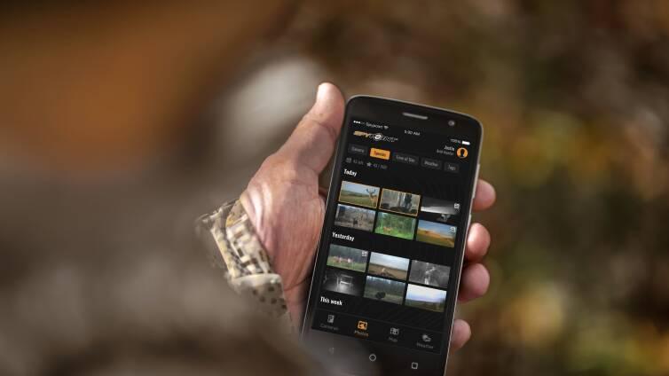 app_lifestyle02.jpg