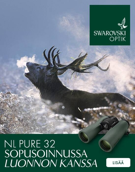 so_hunting_nl_pure_32...